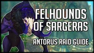 FELHOUNDS OF SARGERAS - Normal / Heroic Antorus Raid Guide | WoW Legion