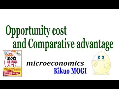 【wizardry】.opportunity cost and comparative advantage.