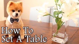 How To Set A Table With Gentleman Norman