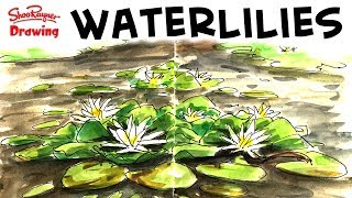 Live Sketching Waterlilies in water colour + free hi res scan!