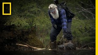 Busy Beaver Trapping | Port Protection