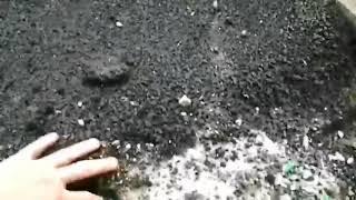 Жол жөндеу жұмыстарына Усолье-Сібір. Маусым 2019
