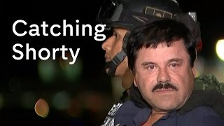 El Chapo - Mexico's most wanted drugs lord in jail, again