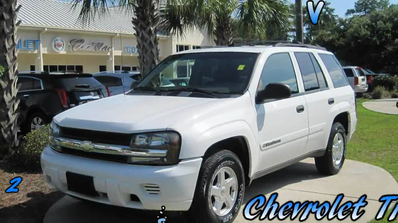 trailblazer 2002 chevrolet trailblazer white 4 2l vortec. Black Bedroom Furniture Sets. Home Design Ideas