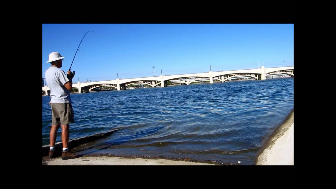 The master at tempe town lake youtube for Tempe town lake fishing