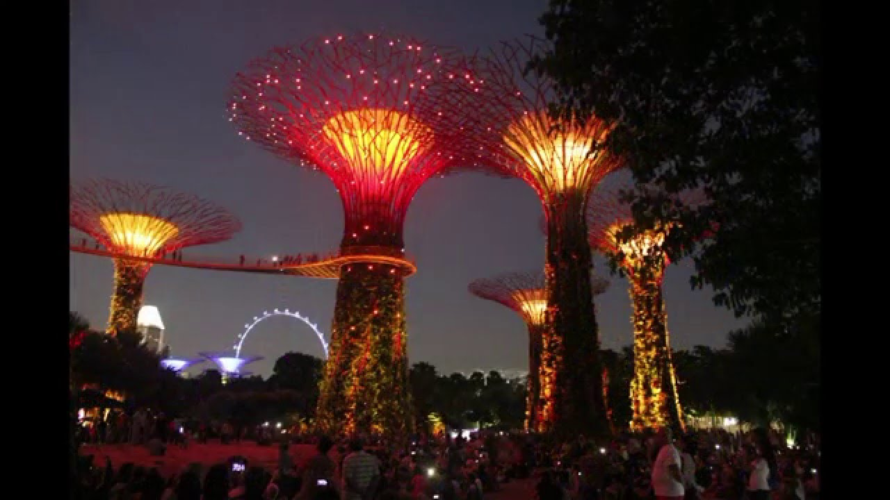 Garden By The Bay Night singapore. gardensthe bay. night light show. 2016-01-16. - youtube