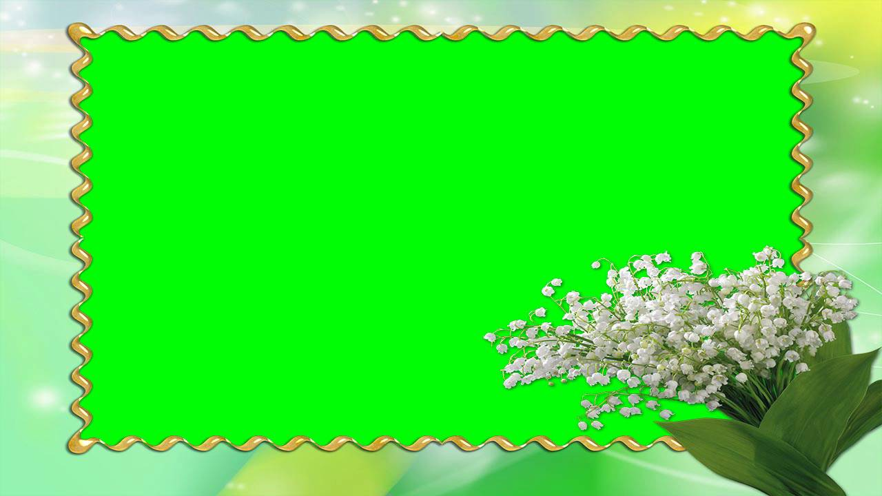 nice photo frame green screen video free for editing 4