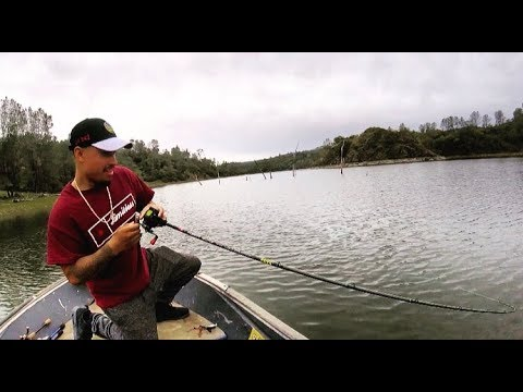Bassoner 500 Fish from YouTube · Duration:  6 minutes 52 seconds