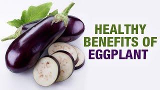 Healthy Benefits of Eggplant (Brinjal) - Manpreet - Diet Talk