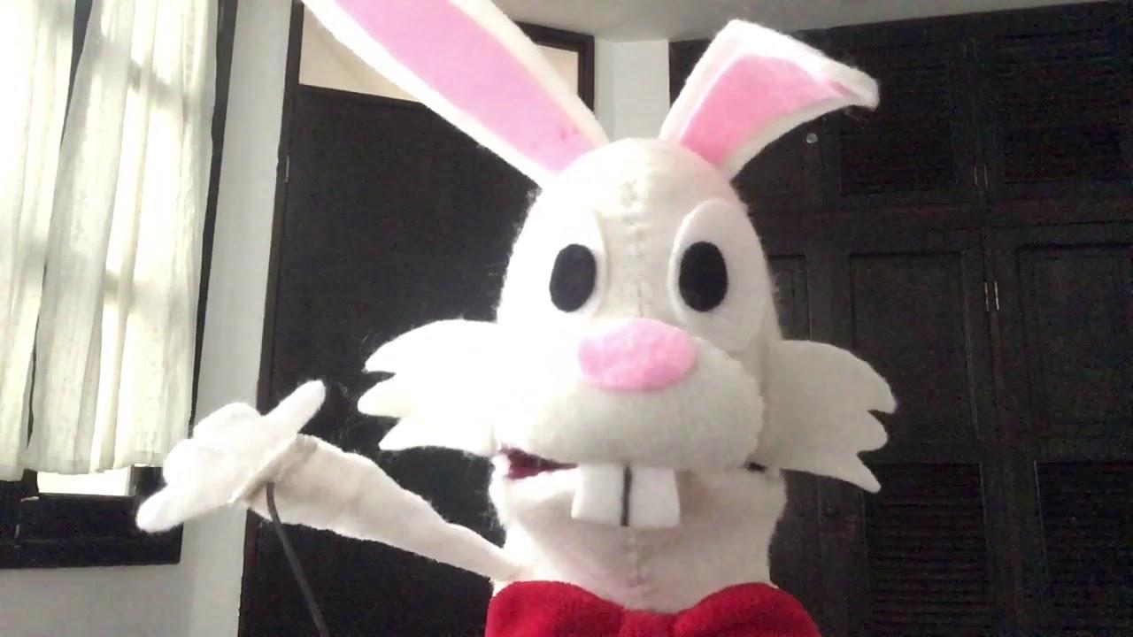Randall Rabbit gives an update.