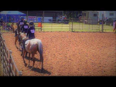 English Equitation At The County Fair