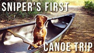 Dog's First Canoe Trip!