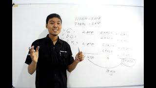 Video Pembelajaran Biologi Metabolisme