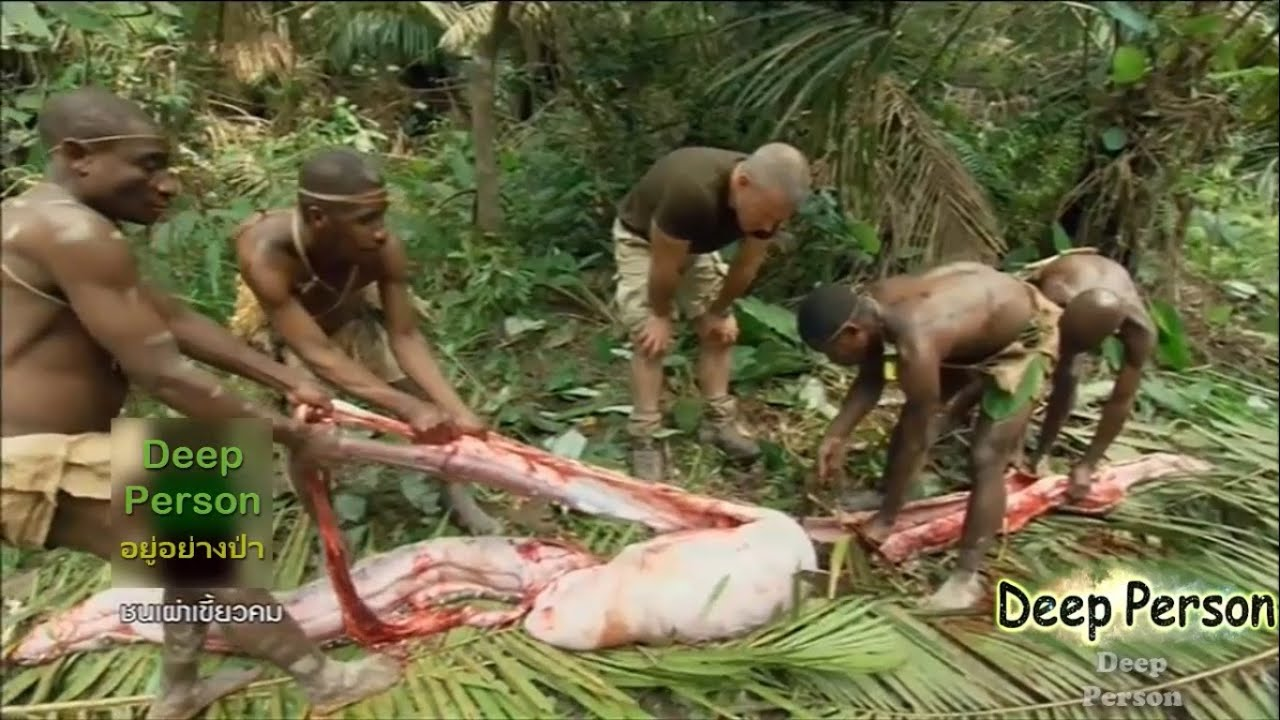 อยู่อย่างป่า EP.3 เผ่าบาก้า ชนเผ่าเขี้ยวคม