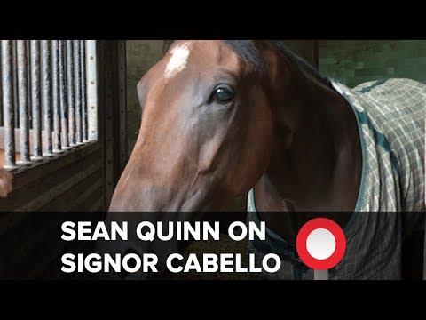 Sean Quinn on improving Signora Cabello