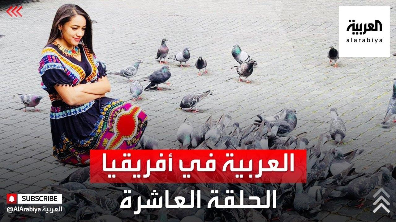 العربية في أفريقيا | فريق العربية يصل براً إلى محطته الأخيرة كيب تاون التفاصيل مع رفيدة ياسين  - نشر قبل 2 ساعة