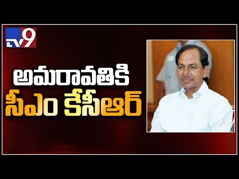 Repeat Garlic can detect Cancer! - TV9 by TV9 Telugu Live