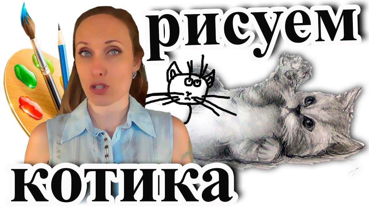 Смотреть нарисованных котов