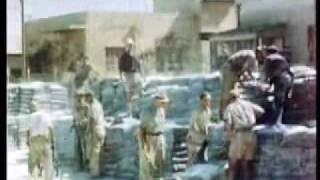 The Spielberg Jewish Film Archive  The White City