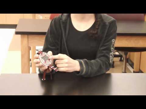Maya's Starter Project - Big Time Watch