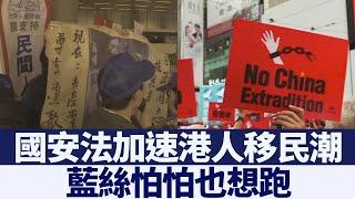 國安法加速港人移民潮 「藍絲」也想跑|新唐人亞太電視|20200601