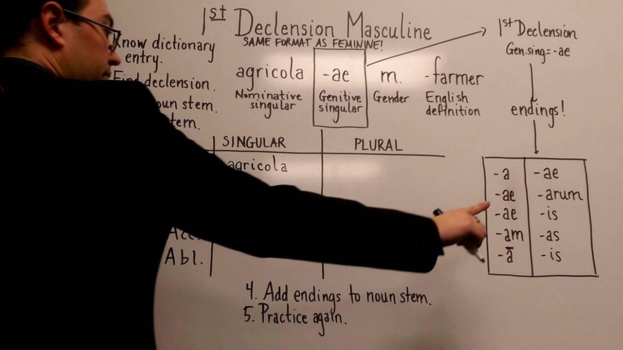 Latin 1st Declension Masculine