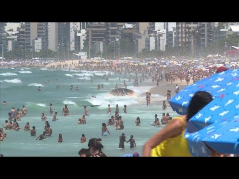 Brazil: Dead whale washes up on Ipanema beach