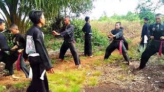 Download Video Begini PSHT Latihan Silat MP3 3GP MP4