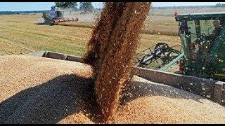 А. Злочевский: Показатель по экспорту зерновых бьет рекорды