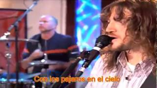 Red Hot Chili Peppers - Scar Tissue (Español) AOL Music Sessions - 2006