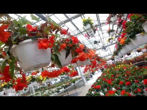 Pesche's Garden Center