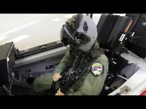 Simulation Systems for Next Generation Pilots
