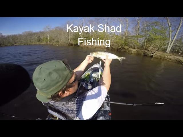 Kayak Shad Fishing -  Vibe Sea Ghost 130