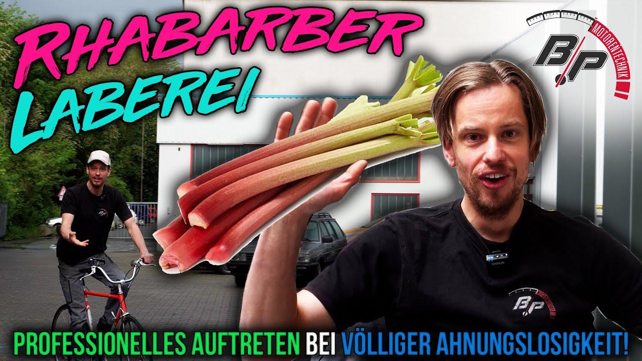 Download Laber Rhabarber?!? Der Planlose Professor deckt auf!   Björns Sprechstunde! #1   BP Motorentechnik