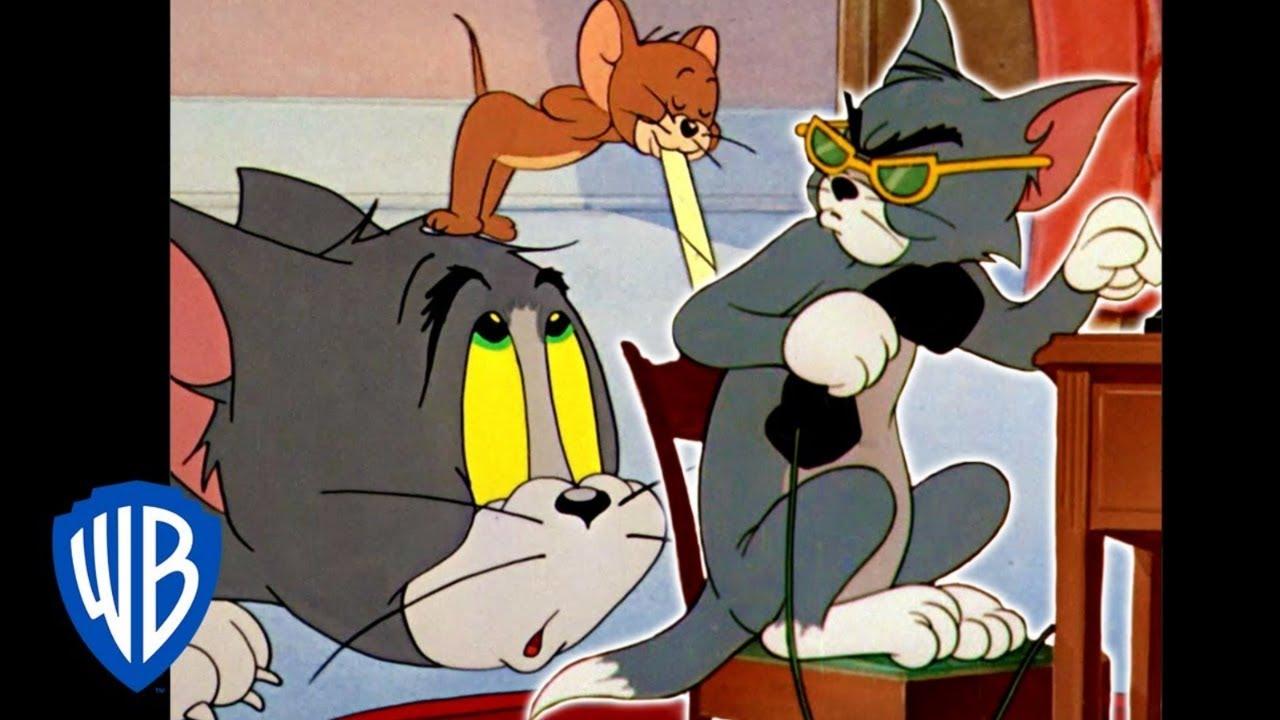 Tom y Jerry en Español Latino America | Cortometrajes Nominados a los Oscars Vol. 1 | WB Kids