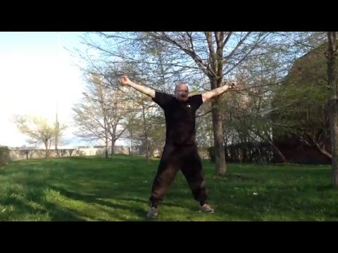 Roger Ashton - Tai Chi Exercises Pt. 1