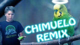Adiós Chimuelo [Cumbia Remix]