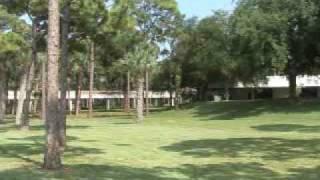 alumni us palm beach community college united states