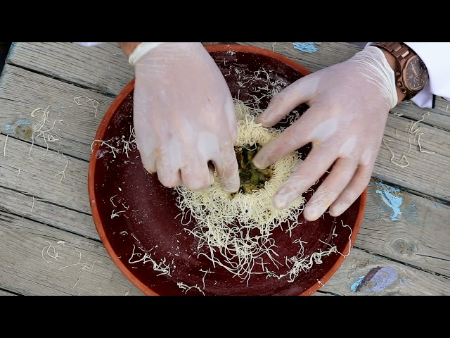 Kadayıf böreği nasıl yapılır?