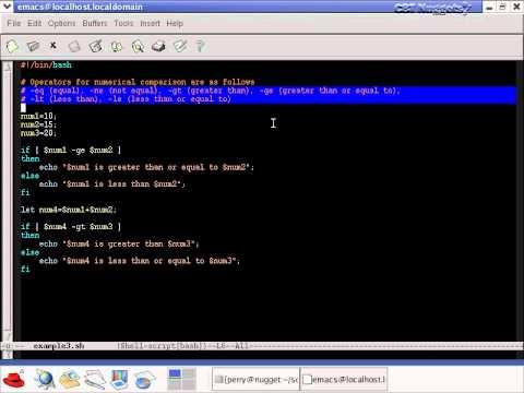 20  Bash Shell Scripting