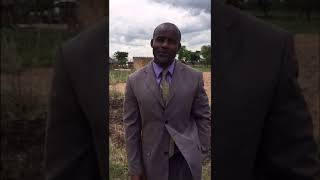Temba Mliswa comments on Mnangagwa
