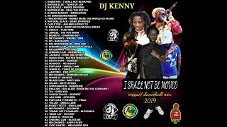 DJ KENNY I SHALL NOT BE MOVED REGGAE DANCEHALL MIX MAR 2019