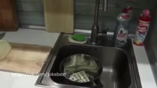Как шинковать капусту(, 2016-09-23T11:13:15.000Z)