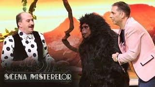 Gorila uriasa King Kong exista! Monstru gigant canta la Scena Misterelor melodia Jaga, Jag ...