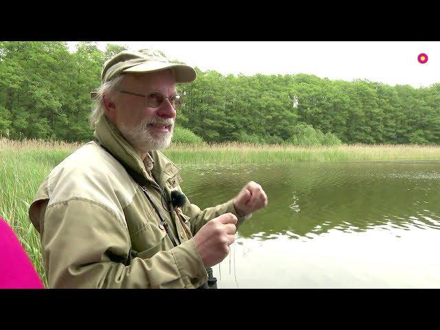 #WirsindBiosphäre: Vogelstimmenimitator Dr. Uwe Westphal