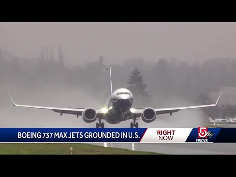 Boeing 737 Max jets grounded in US
