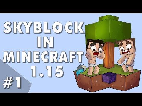 Skyblock In Minecraft 1.15! - Episode #1