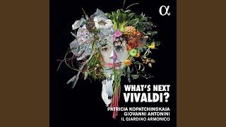 Play Concerto in sol minore, RV 157, per archi e b.c. I. Allegro