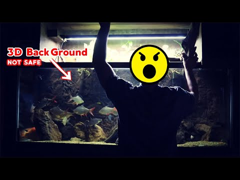 Keep An Eye On Those Fancy 3D Aquarium Backgrounds