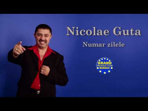 Nicolae Guta - Numar zilele (Official Track)
